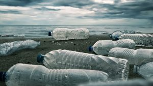 Plastic at Sea Costs Society Billions of Dollars in Damage