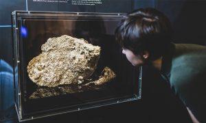 news fatberg museumsvictoria 1220px